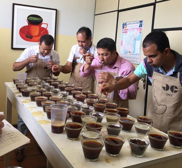Agricultores de Ibicoara e região se destacam em I fase do Concurso de Cafés Especiais