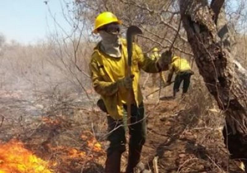 Incêndio em Parque Nacional Boqueirão da Onça consome mais de 3,5 mil hectares