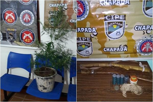 Chapada Diamantina: Jovem é preso com plantação de maconha em casa na cidade de Lençóis