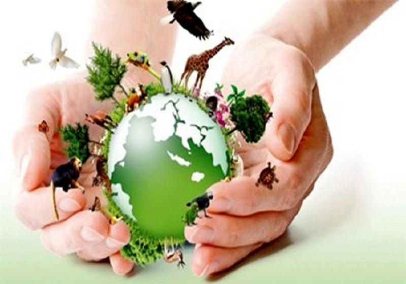 ONU lança iniciativa para proteger defensores ambientais